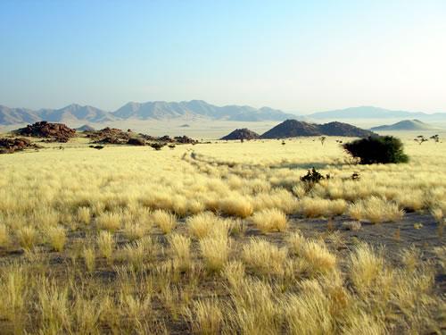 - 201110-namibia-namibrand-nature-reserve